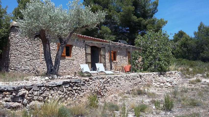Cosy cottage for nature lovers. - L'Ametlla de Mar - House