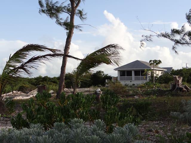Bambarra Sands Beachfront Cottage