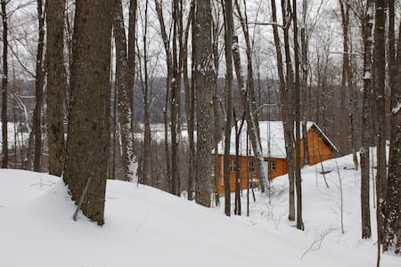 Boreal Forest Log Home