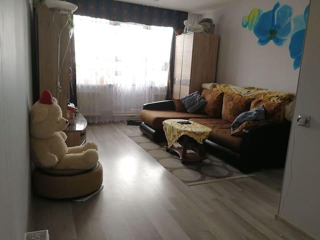 Уютная квартира/cozy flat