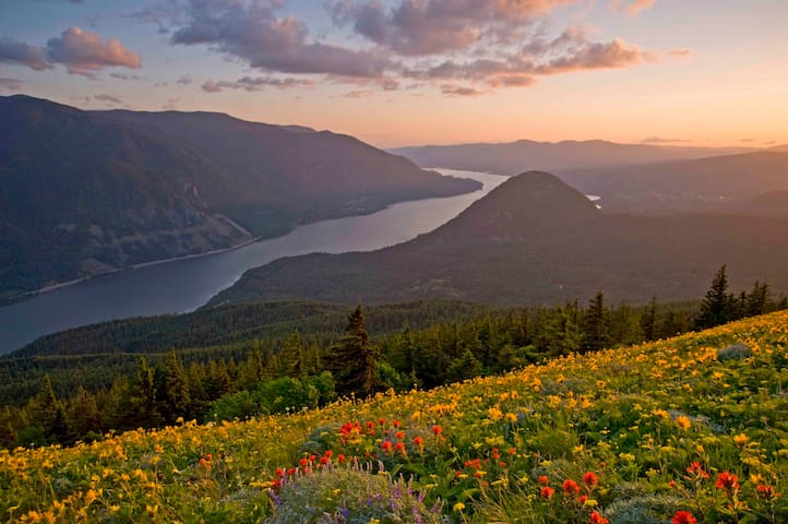 Image by Peter Marbach, used with permission: Wildflowers on Dog Mountain by Stevenson, WA, 25 min from Hood River