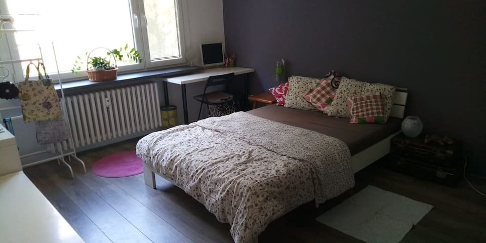 Private room in a renovated/nice/calm apartement