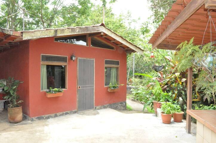 Rustic 'cabina' on a 4 acre macadamia nut farm - Tronadora - Cabane
