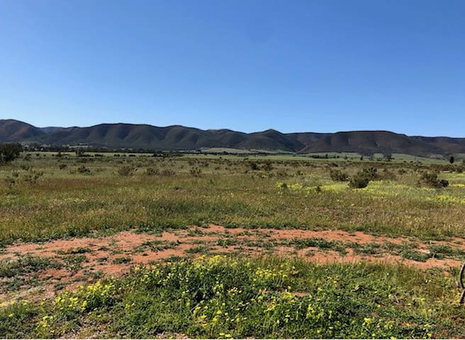 Flinders Ranges with a view and spa Napperby