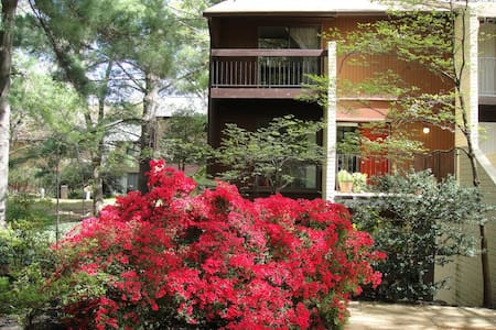 Beautiful Garden Apartment with Private Entrance - 아파트