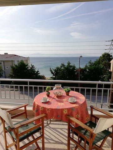Nicola's House - Palio