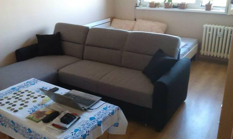 My shared sofa - Bratislava - Wohnung
