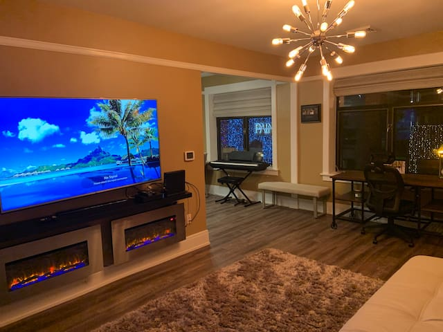 Stylish Downtown Rochester Suite #4