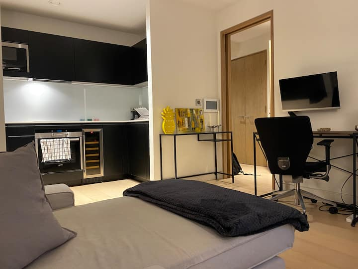 Luxury Serviced Apartment (City of London)