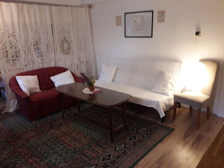 Oberlaa Appartment WiFi incl. 15 min. To City