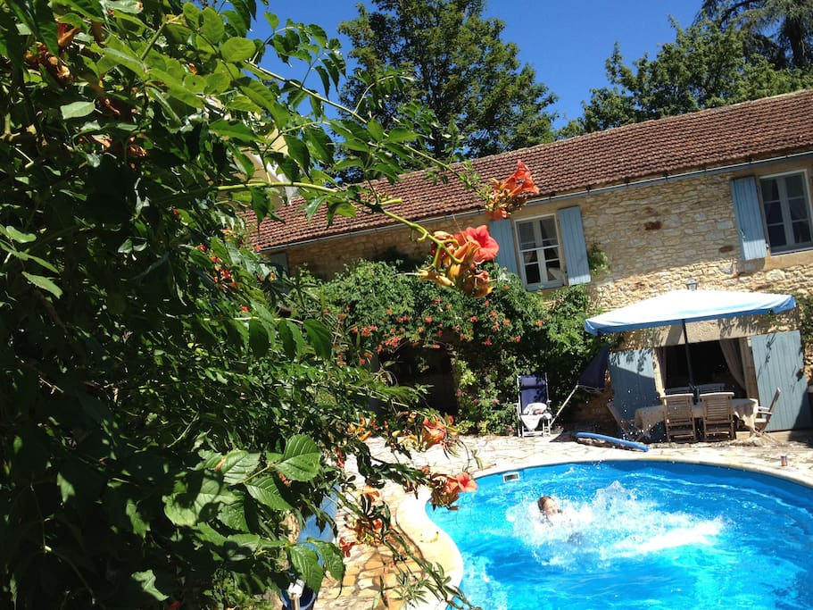Beautiful pool and and garden - perfect for hot sunny days...