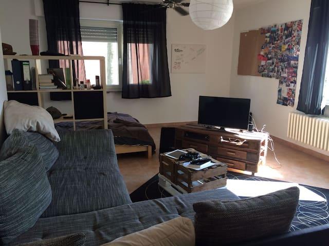 Chilliges Zimmer (28 qm groß) - Bonn - Lejlighed