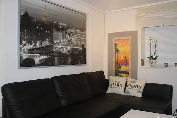 Entire apt, great location, city center&quiet - Odense - Appartement