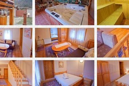 Къща за гости с. Борущица - Borushtitsa