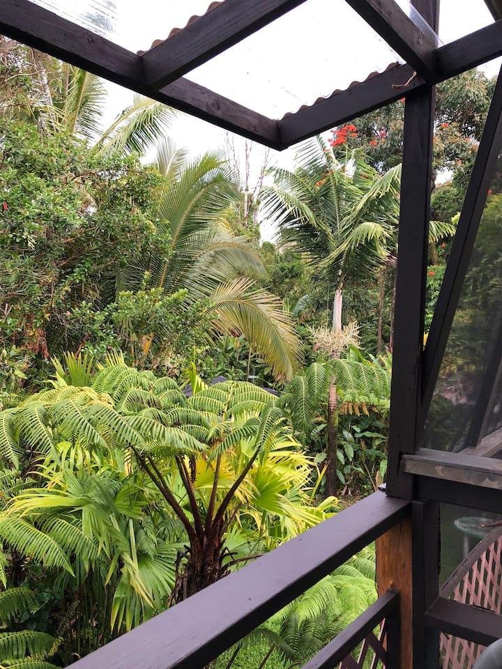 East Hawaii Jungle Suites, Treehouse Cottage