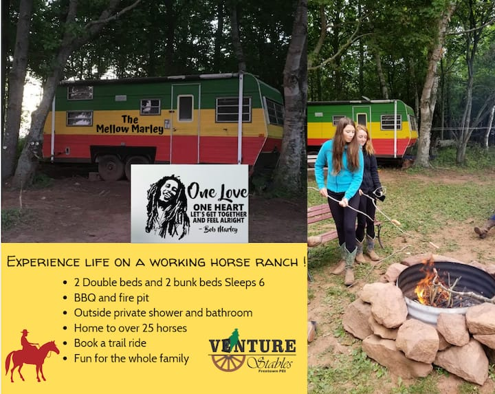 The Mellow Marley ~ Glamping on PEI~