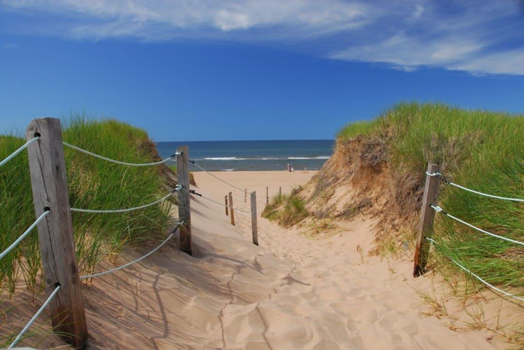 Sandy's Beach