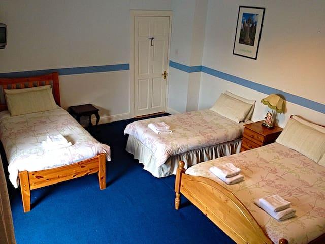 €99 Family Room - Quadruple Ensuite - Cashel - Bed & Breakfast