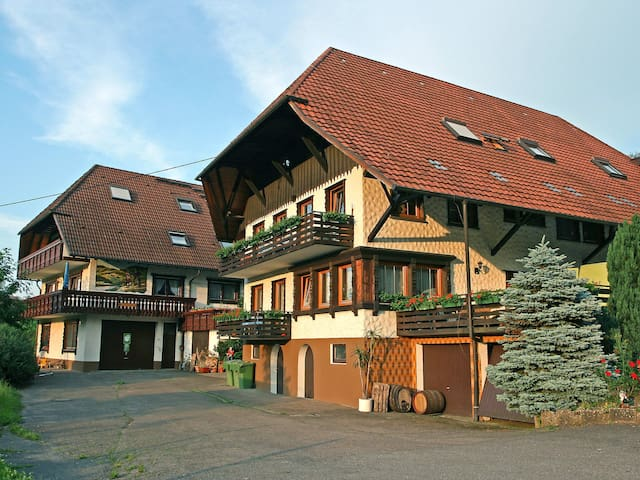 Pension Himmelsbach 4402.1 - Steinach - Apartament