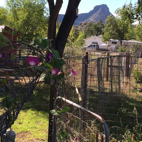 A golden moment at the garden gate