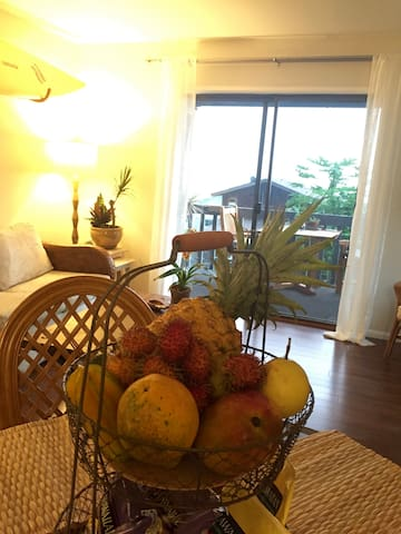 tropical local fruit amenity changing according to seasonality and length of stay