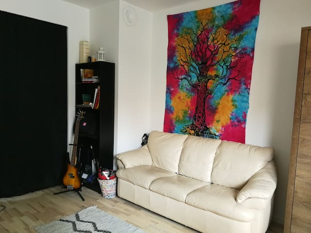 The giant double room nearby Valby Station