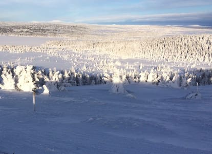 Ski paradise Sjusjøen Norway
