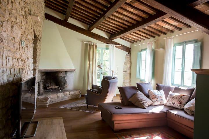"""Salone con accesso diretto al giardino, camino,  divano(letto), TV 55"""""""