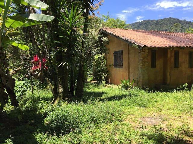 a casa vegetação nativa ao redor.  maravilhoso acordar ao som dos pássaros