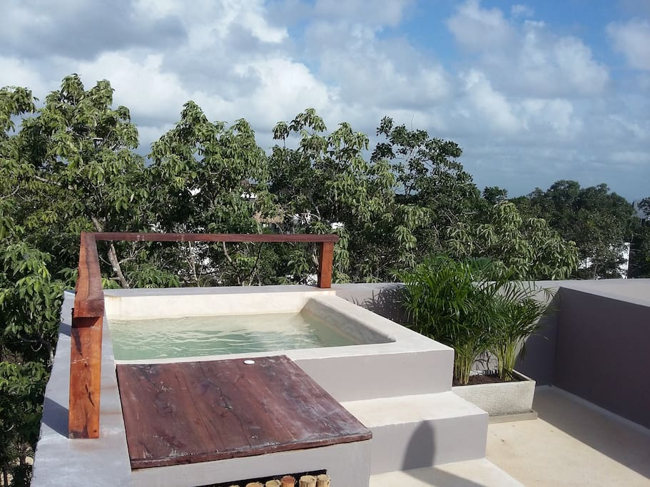 Design penthouse plunge pool flats for rent in tulum for Plunge pool design uk