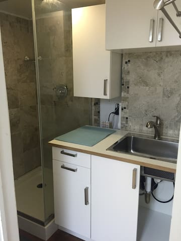 Private shower and kitchen sink with storage.