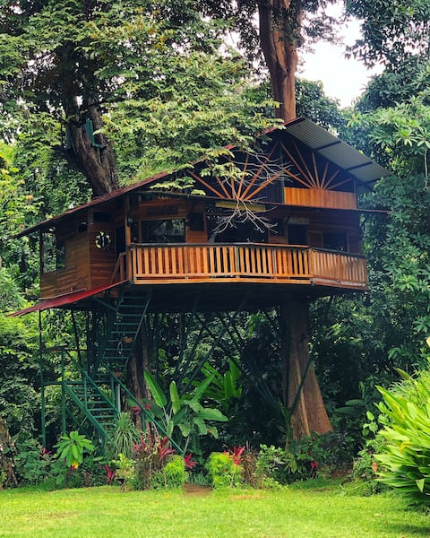 Treehouse with butterfly and exotic fruit farm.