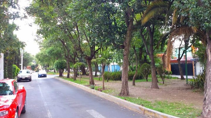Amplia Habitación con baño, centro Coyoacan y UNAM