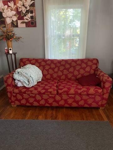 Sleep on Budget on sofa in living room