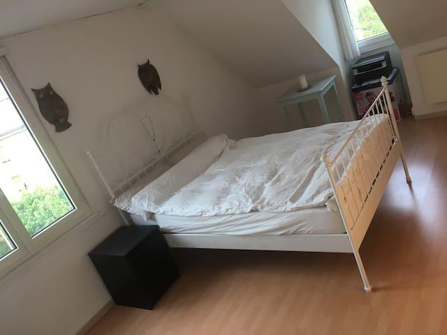 Beautiful Room - Rosenberg/OLMA & Uni 5 Min