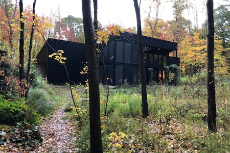Modern Cabin in the Woods 1