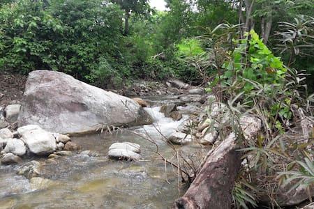 Chiang Mai Hut in jungle - Mon Chong - Cabana