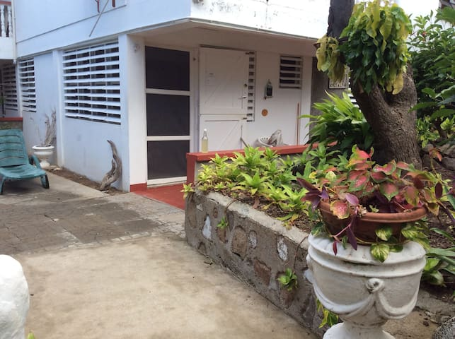 Oceanview Apartments 1 - Scotts Head - Departamento