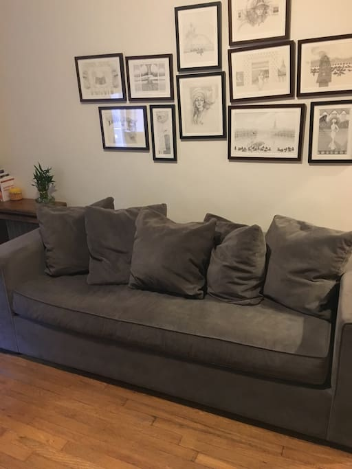 Comfortable couch that pulls out and sleeps 2