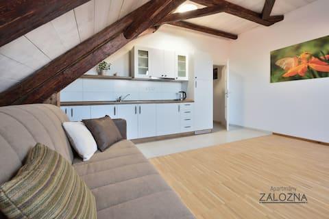 Útulný apartmán se samostatnou ložnicí