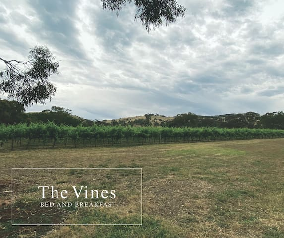 The Vines Bed and Breakfast (B1 & B2)
