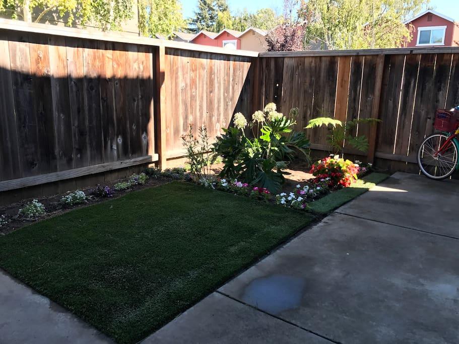 Very fresh and beautiful garden