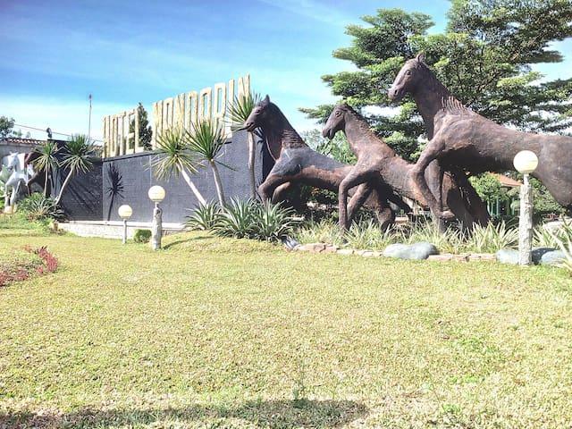 Hotel Mandarin Lee Bandar Jaya Lampung Tengah - Central Lampung Regency