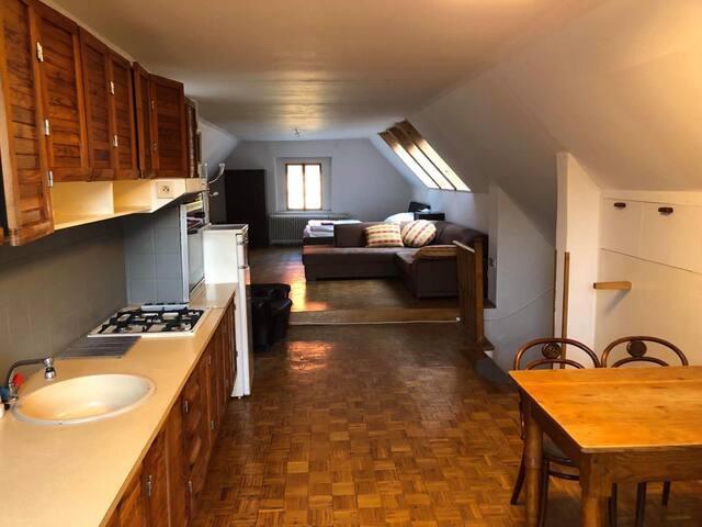 Apartment Hroznovka 3