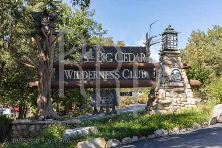 Wilderness Club™ at Big Cedar® -  Studio