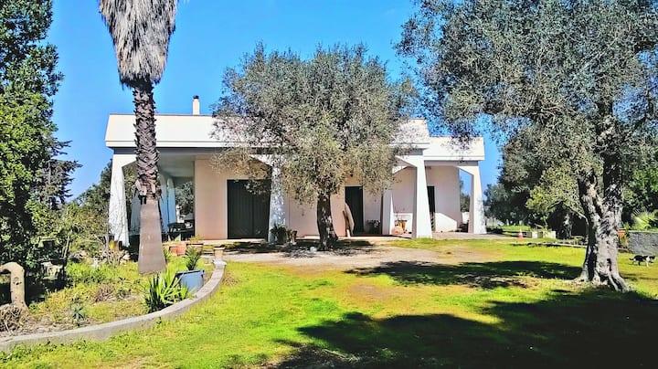 Villa Chorion