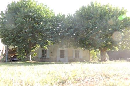 ENTRE CHEVREUIL ET CERF - Belin-Béliet - Σπίτι