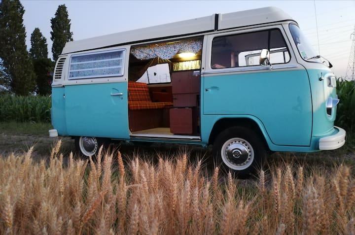 Nuit insolite en VW Combi à domicile + terrasse