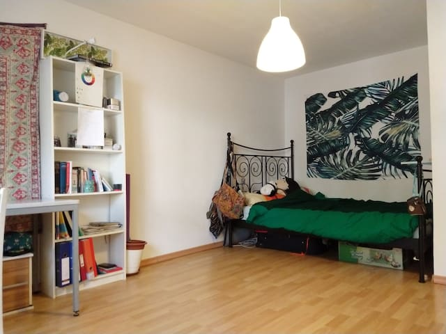 Room in English speaking shared apartment
