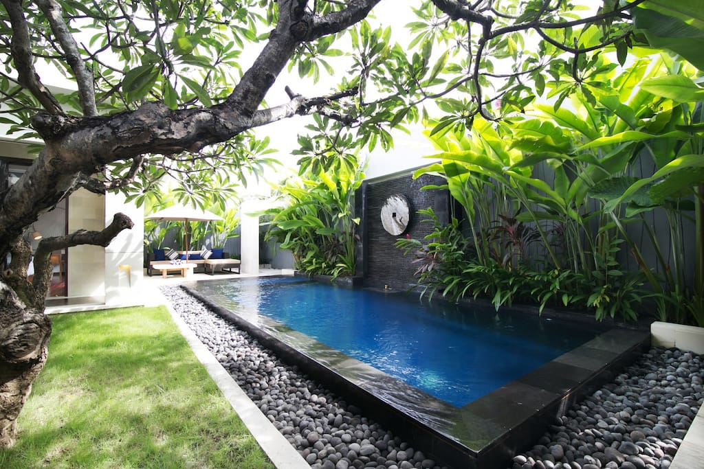 Pool with water feature - tropical lust garden